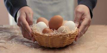 man takes eggs from the basket and put it to the baxoes. Small farmm worker