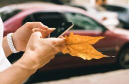 Female hand holding a mobile phone and fallen autumn leaf close-up. A woman uses a mobile application while walking through the city streets.